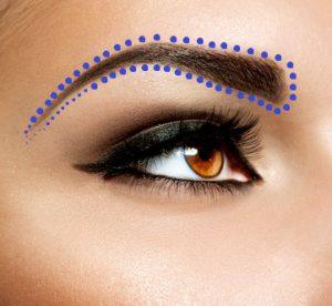 Brown Eye Makeup. Eyes Make-up